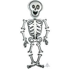 Скелетно-мышечная система